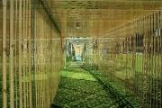Bewegende Corridor