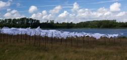 Zakdoeken-drogen-in-de-Wind-5-big