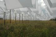 Zakdoeken-drogen-in-de-Wind-2-big