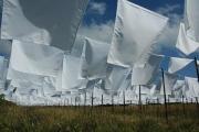 Zakdoeken-drogen-in-de-Wind-4-big