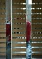 04-02-09_tralies_big