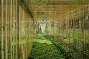 Moving Corridor